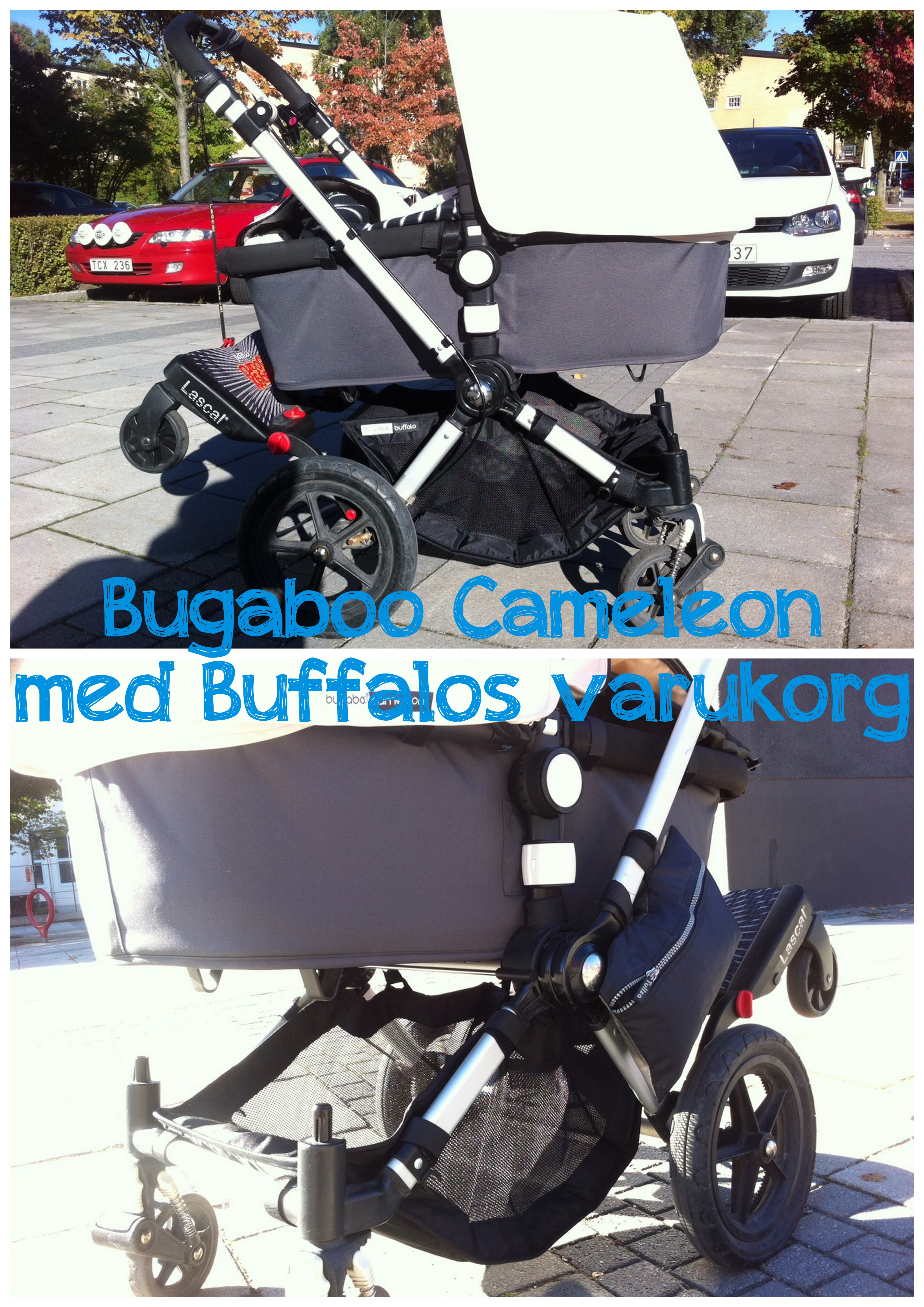 Bugaboo Buffalos varukorg på Bugaboo Cameleon