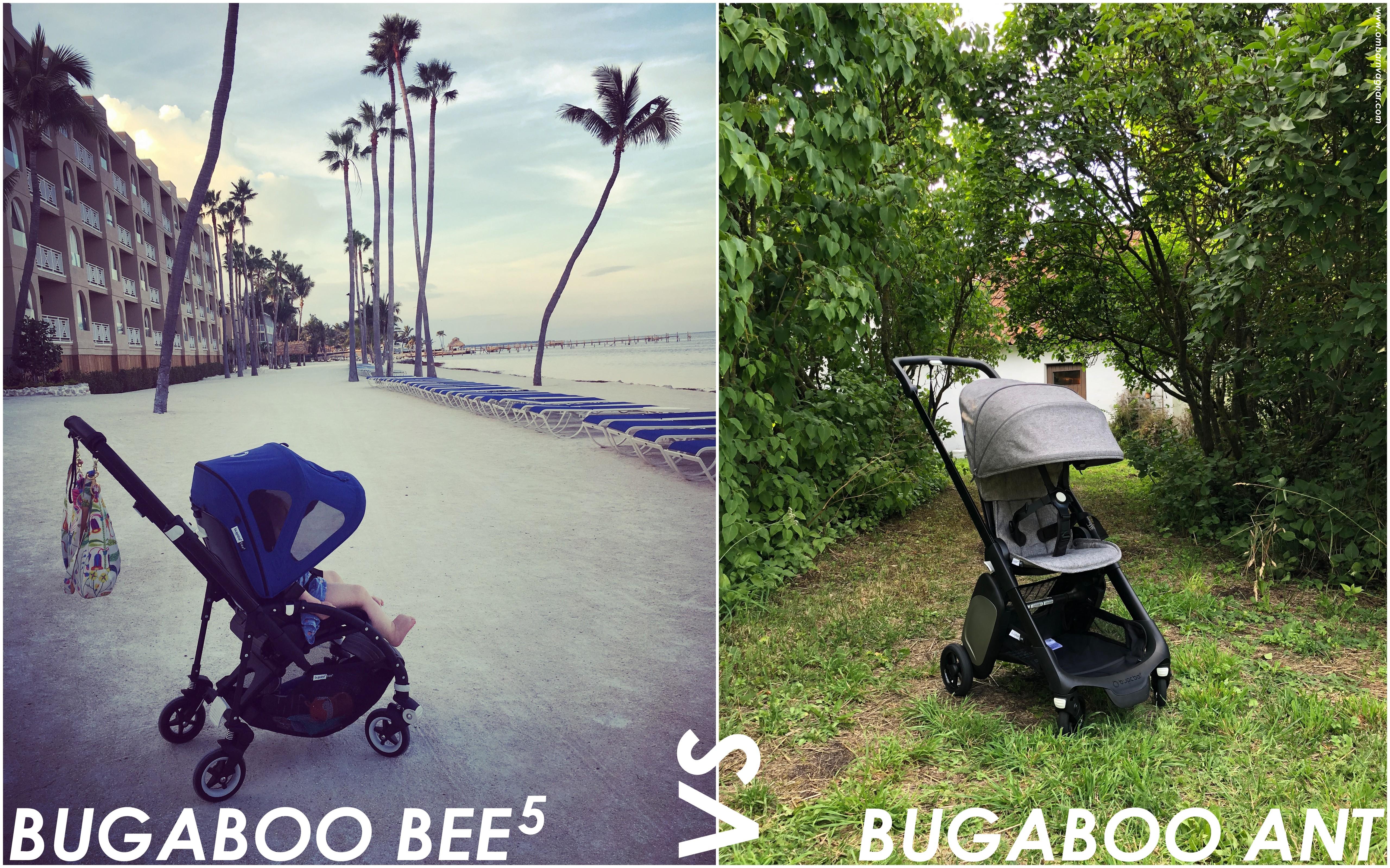 Bugaboo Ant eller Bugaboo Bee5 - jämförelse mellan Bee och Ant